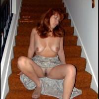 Anne N #12