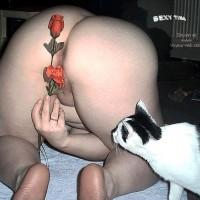 SEXYTINA Valentine
