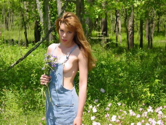 Pic #1 - *Hv Heide In The Sunshine