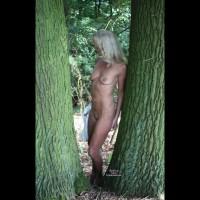 Tina Bewundert Die Bäume
