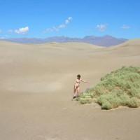 Willow Walks The Dunes Part 2