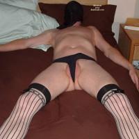 Zeddy In Stockings