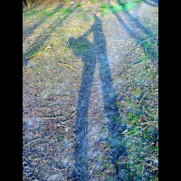 Act Of Love Seeing Only Shadow - Doggy Style