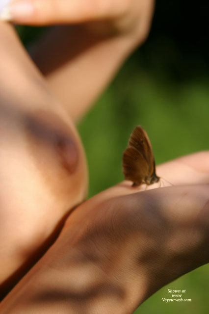 Pic #1 - Nipples Closeup - Close Up , Nipples Closeup, Closeup, Artistic Shoot, Nipple, Nude In Outdoors, Naked In Outdoors, Butterfly On Hand, Blurry Tits