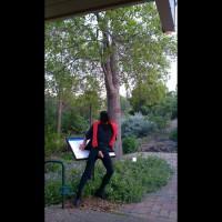 M* The Botanical Garden