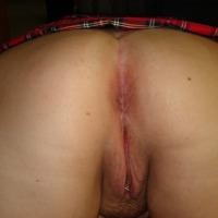 My ass - Bear