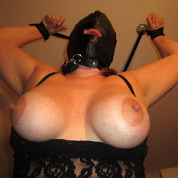 Tied Up Showing Big Tits - Artistic Nude, Big Tits, Bondage, Huge Tits, Large Breasts, Perfect Tits, See Through, Showing Tits, Sexy Boobs