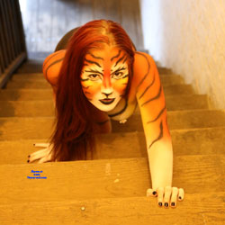 Tiger On The Stairs - Artistic Nude, Indoors, Nipples, Showing Tits, Small Breasts, Small Tits, Hot Girl, Sexy Face, Sexy Girl, Costume