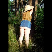 Gina Deen 10 Sunny Morning In The Woods I