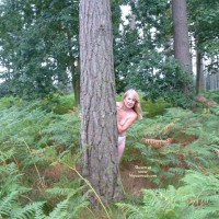 Ann In The Woods