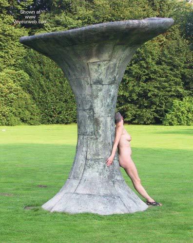 Pic #4 - Middelheimpark