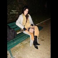 *Ny La Soiree De Miaou Dans Paris