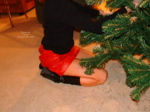 Pic #1 - Trimming The Tree