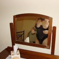 Aussielouise - Mirror